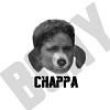 Chappa - logo.png