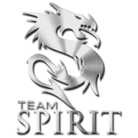 Team Spirit - logo.png