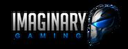 Imaginary Gaming - logo