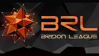 Bridon Open Cup.png
