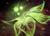 Greater Faerie Fire icon.png