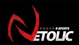 Netolic logo.jpg