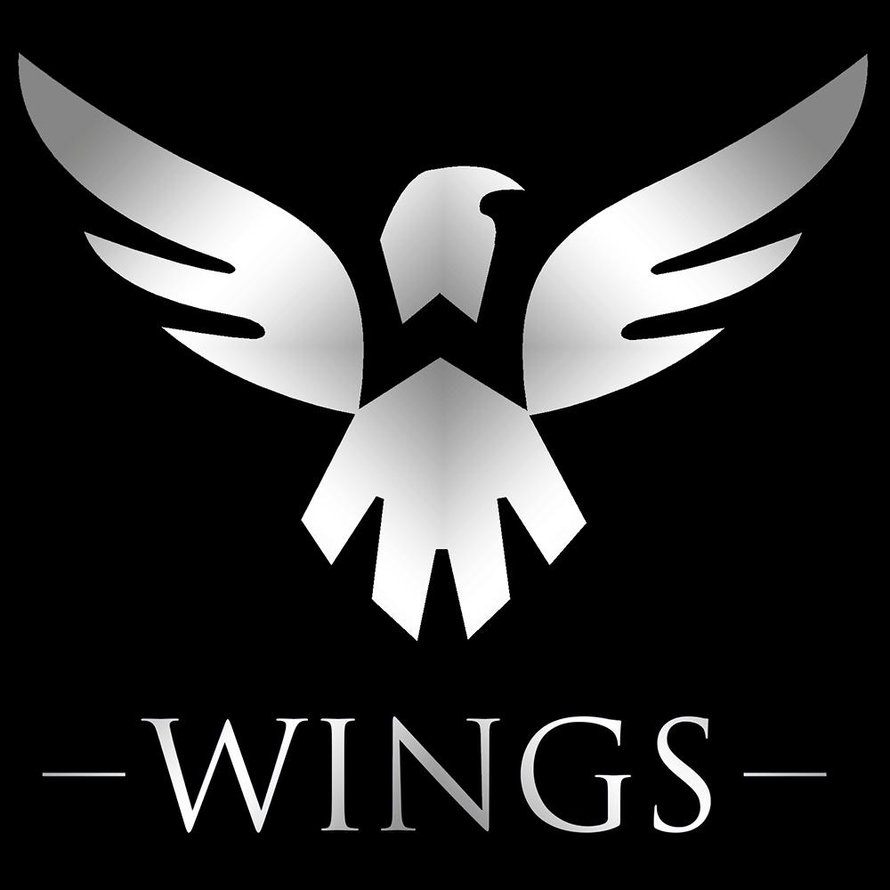 Wings Dota 2