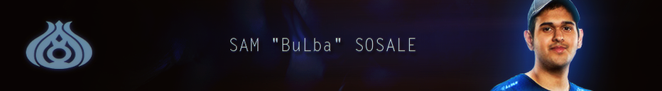 Brand banner bulba.png