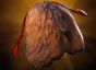 Siltbreaker Cloak of the Bear icon.png