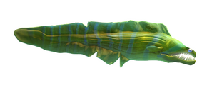 Reef's Edge Moray Eel Preview.png
