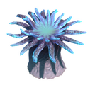 Reef's Edge Anemone Preview.png