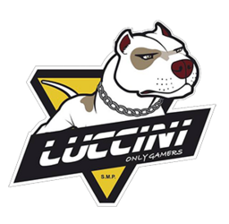 Team icon Luccini Gaming.png