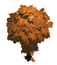 Autumn Terrain Tree 2 Preview.png