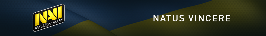 Brand banner Navi.png
