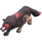 Lycan Wolf model.png