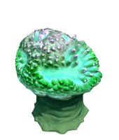 Reef's Edge Tree Anemone 2 Preview.png