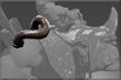 Bomba Muscular do Assistente