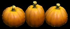 Autumn Terrain Pumpkins Preview.png