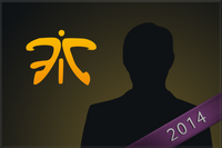 2014 fnatic large.png