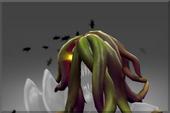 Head of the Creeping Vine