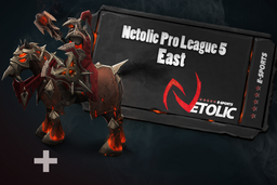 Cosmetic icon Netolic Pro League 5 East.png