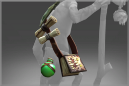 Cosmetic icon Satchel of Morbific Provision.png