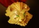 Medallion of Courage icon.png