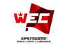 World Esports Championship