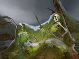 The Bog Bodies (Guild Raid)
