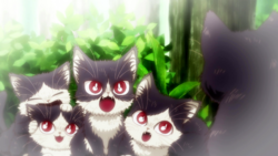 Haru's siblings.png