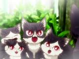 Haru's siblings