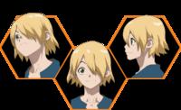 Ginro Icons