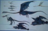HTTYD2 Drachen Konzepte