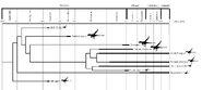 Lophoraptoridea history by hyrotrioskjan