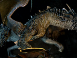 Wyrm (Dragon's Dogma)