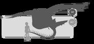 Donnertrommler Größe