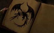Buch der Drachen Skrill Serie