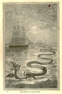 Egidius Seeschlange