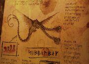 Wahnsinniger Zipper Buch der Drachen.jpg