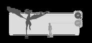 Trampler Größer