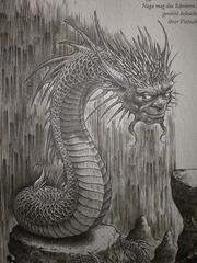 Naga Dragonology.jpg