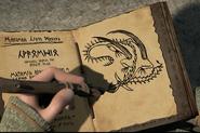 Wechselflügler Buch der Drachen Serie
