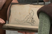 Buch der Drachen Taifumerang.png
