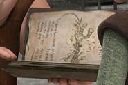 Buch der Drachen unbekannter Eintrag