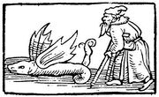 Early woodcut of a winged hazelworm.jpg
