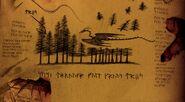 Holzklau Buch der Drachen 2
