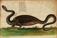 DracoBipes2