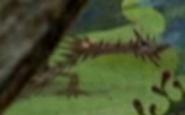 HTTYD Dragons BoD Drache 3