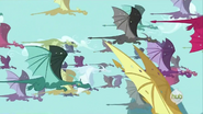 Drachenwanderung 2