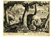 Plinius Elefant 1