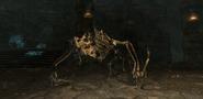 SkelettdracheSkyrim