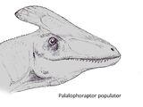 Palalophoraptor populator