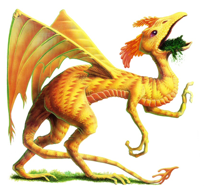 Berengarian dragon.jpg