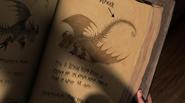Buch der Drachen Tödlicher Nadder